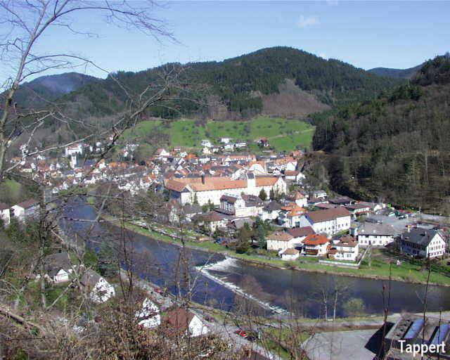 Schwarzwald for Ferienwohnung im schwarzwald
